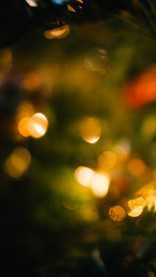 Tree Lights 1